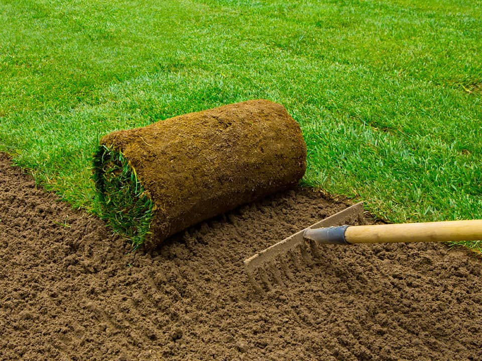 Turf Suppliers in Essex